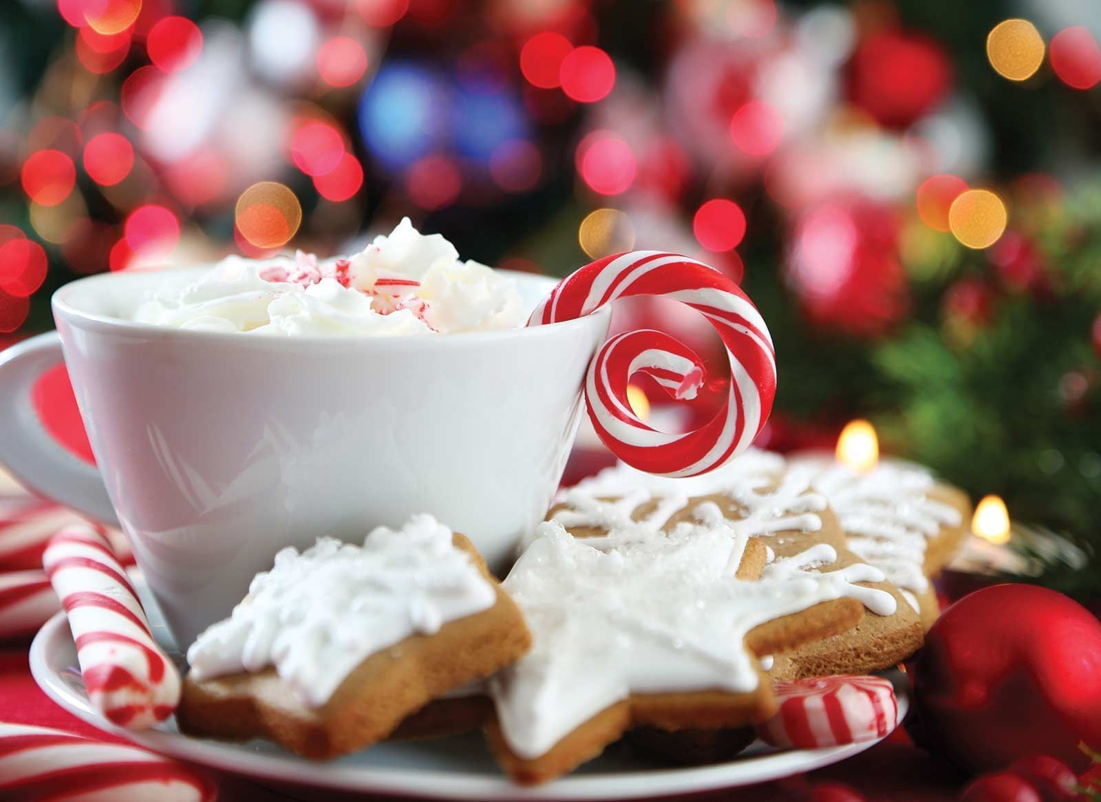 coffee mug with cookies, peppermint, candy canes