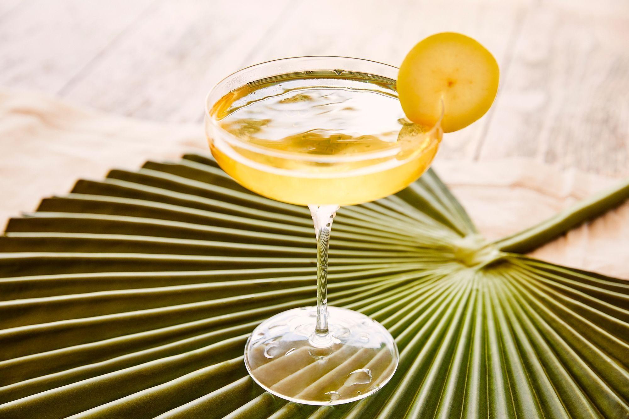 Cocktail drink on palm leaf at Daydream Island Resort