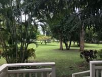 view from a cabin patio at Waimea Plantation Cottages