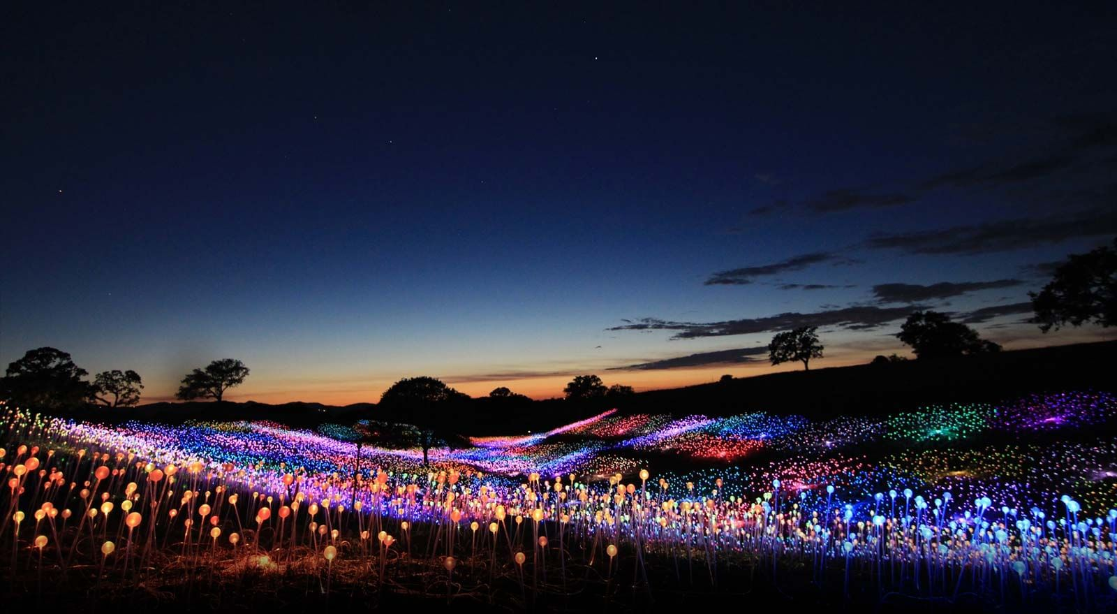 Field of Lights experience.  Many colors cover the field as the