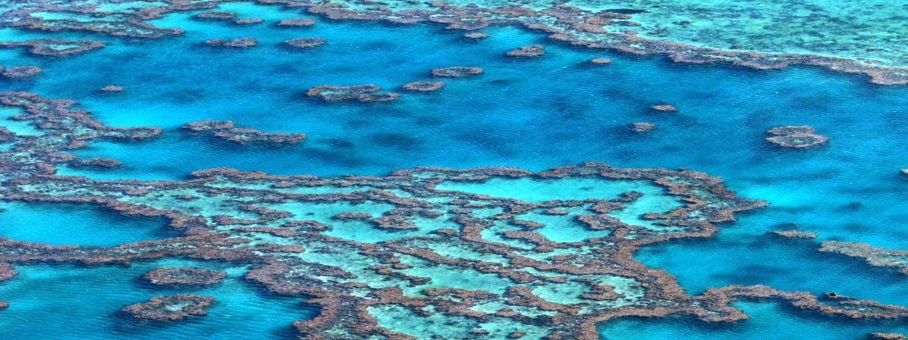 View of Great Barrier Reef near Daydream Island Resort