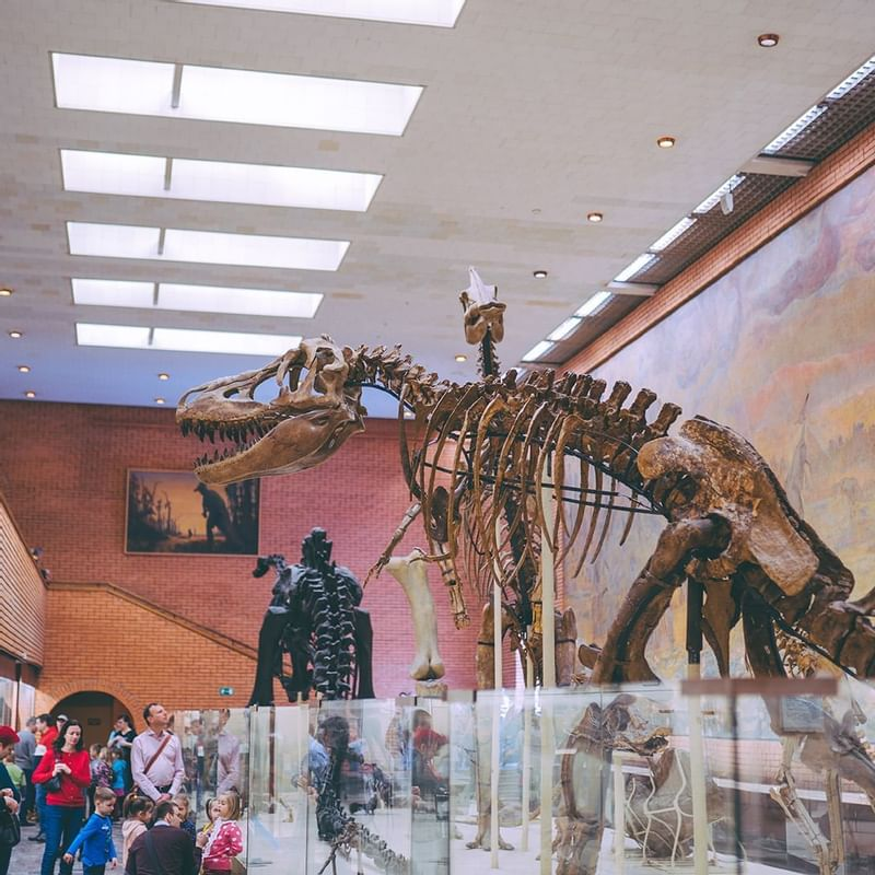 Perot Museum of Nature and Science - WARWICK CORPORATE