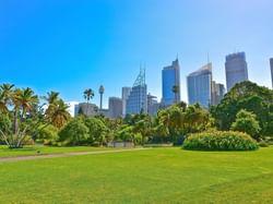 Royal Botanical Gardens Sydney