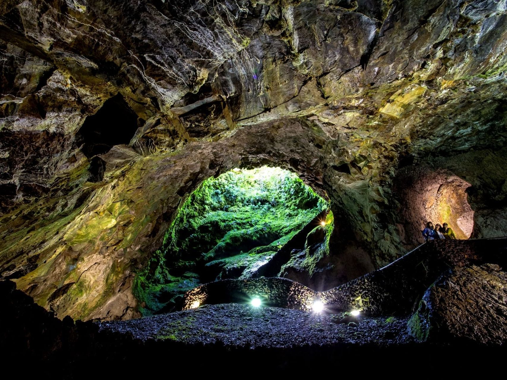 Reserva Natural do Algar do Carvão