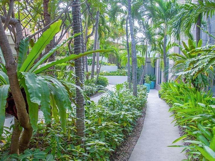 View of Landscaped Garden  at Emporium suites Chatrium hotel