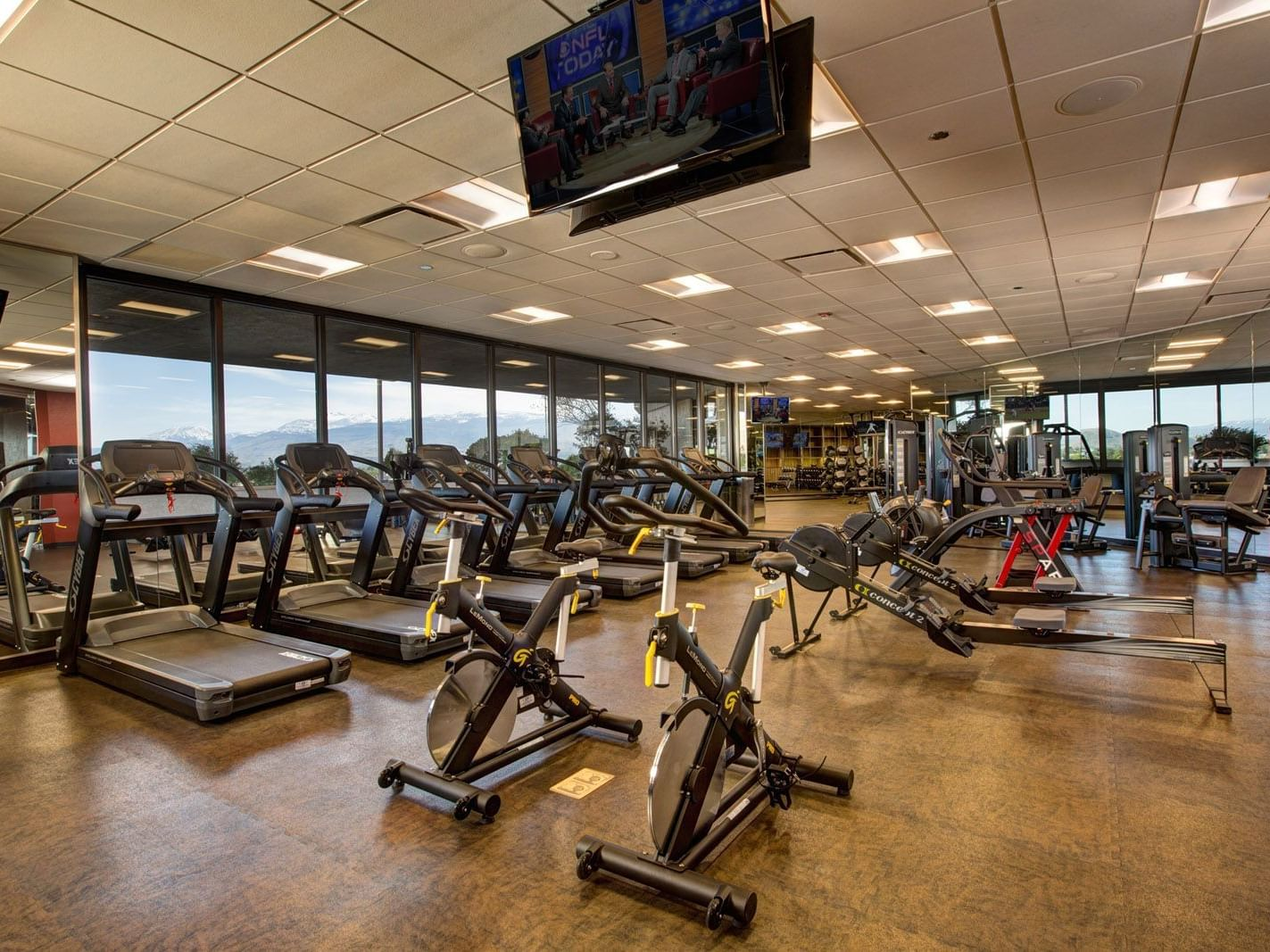rows of treadmills and bikes in a gym