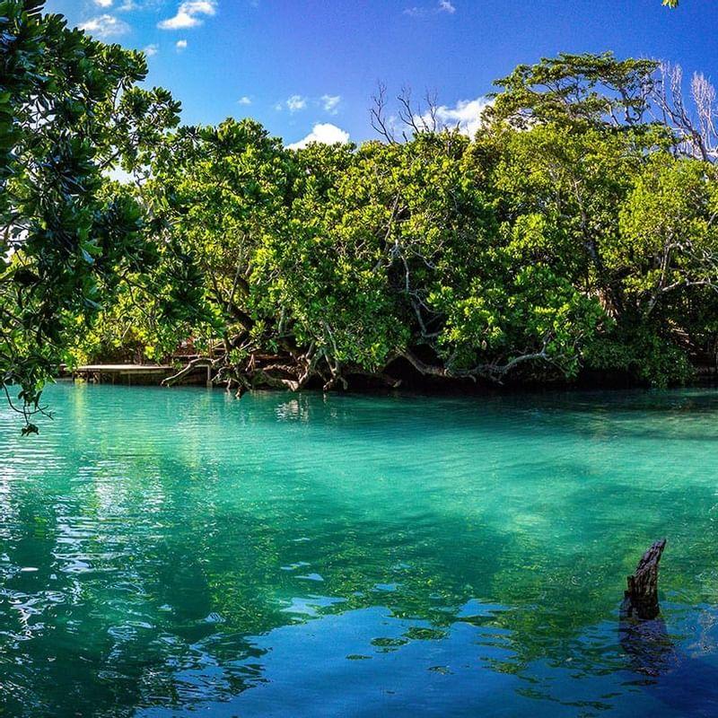 Blue Lagoon - WARWICK CORPORATE