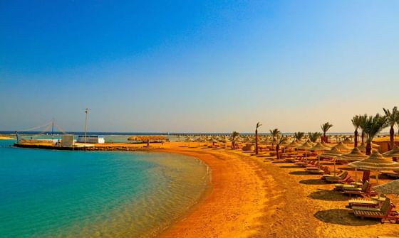 Beach With Palms And Deckchairs At Resort In Egypt