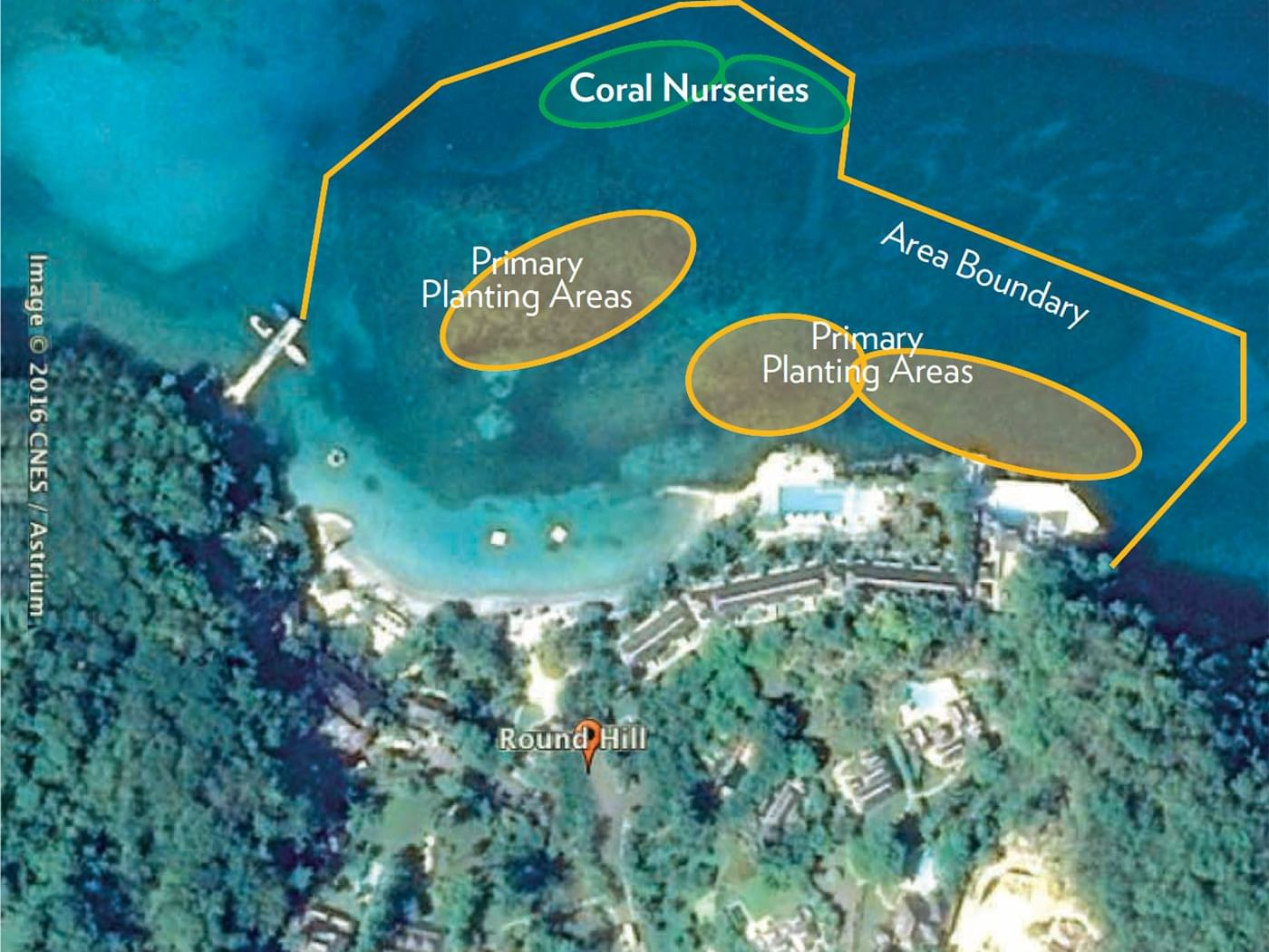 Aerial view of the Round Hill Reef Gardens in the beach