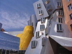 a building in cambridge ma