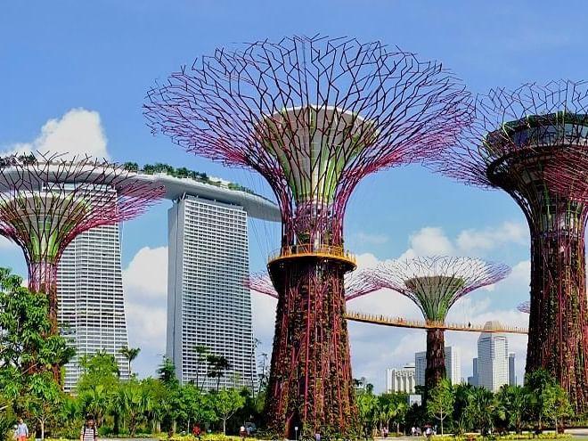Tree shaped fountain at Singapore