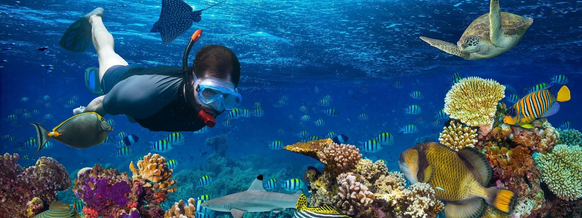 Person snorkeling in deep sea near Daydream Island Resort