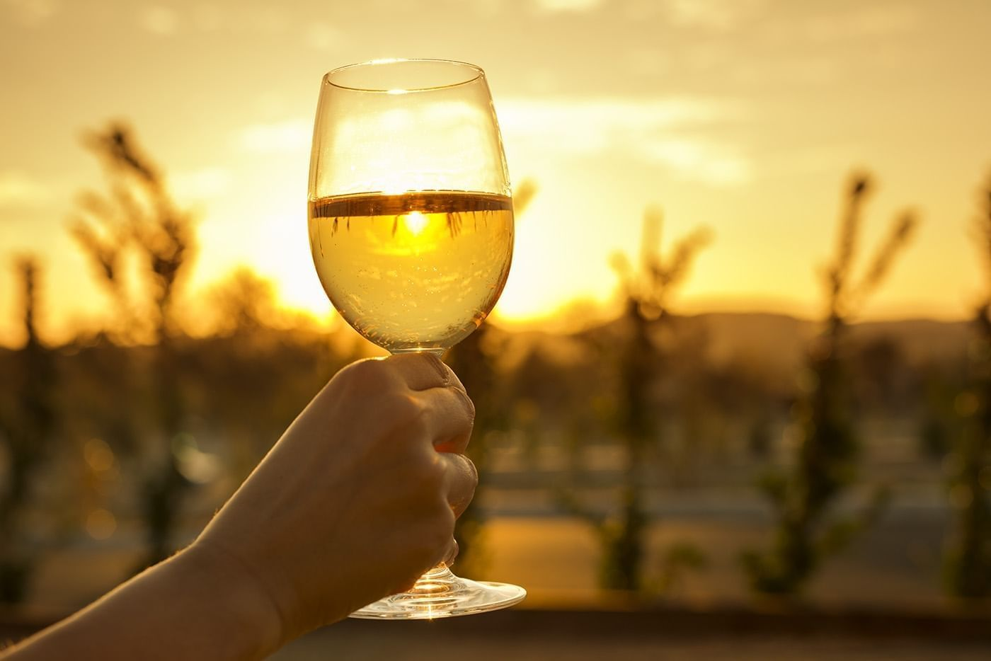 Wine glass held up with the sun setting in the distance