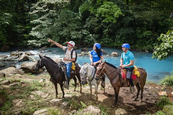 Horseback Riding by the River