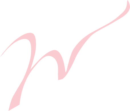 Intro Logo at Wow Hotels Group