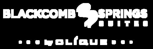 logo of blackcomb springs suites