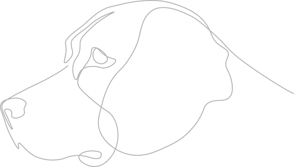 sketch of dog profile