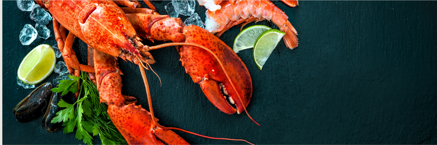 Grilled lobster in Graze Dining at Daydream Island Resort